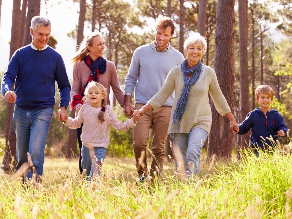 Eine Familie aus Großeltern, Eltern und Kindern fröhlich im Grünen